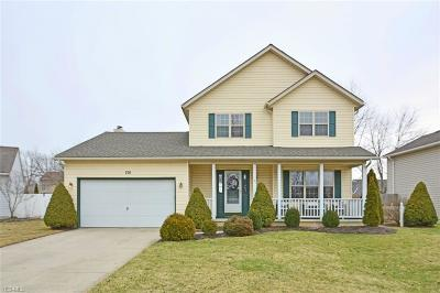 Elyria Single Family Home For Sale: 216 Bayberry Dr