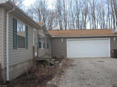 Ashland County Single Family Home For Sale: 656 County Road 175