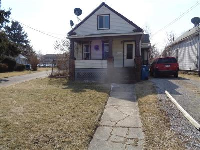 Lorain Single Family Home For Sale: 703 West 18th St