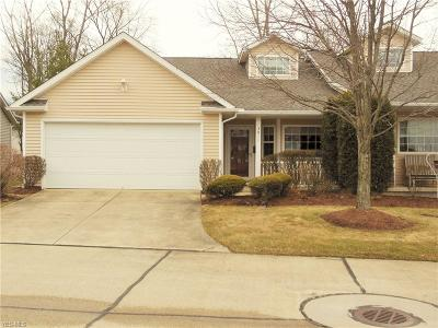 Medina County Single Family Home For Sale: 3911 Dartford Ln