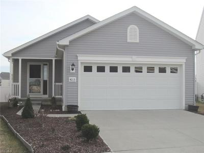 Lorain Single Family Home For Sale: 4013 Montgomery Dr