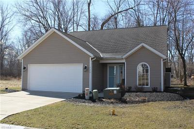 Painesville OH Condo/Townhouse For Sale: $134,900