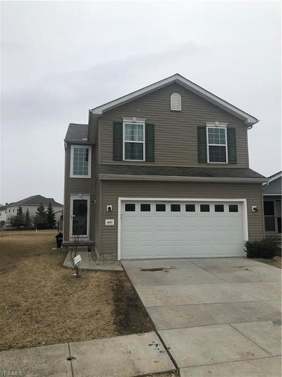 Lorain County Single Family Home For Sale: 4007 Montgomery Dr
