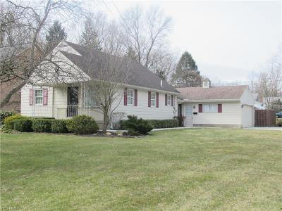 Canfield Single Family Home For Sale: 90 Hood Dr