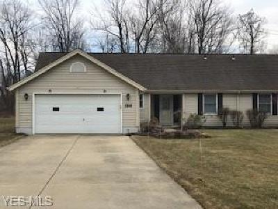 Painesville OH Single Family Home For Sale: $152,000