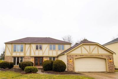 Strongsville Single Family Home For Sale: 17656 Brandywine Dr