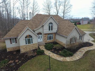 Wadsworth Single Family Home For Sale: 2260 Thoroughbred Dr