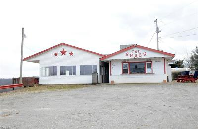 Guernsey County Commercial For Sale: 19510 Leatherwood Road