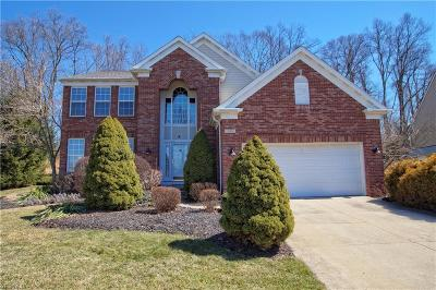 Sagamore Hills Single Family Home Contingent: 315 Pineo Ct
