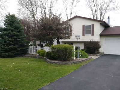 Lordstown Single Family Home Contingent: 1200 Carson Salt Springs