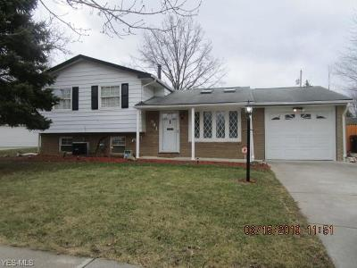 Elyria Single Family Home For Sale: 941 Hollywood Blvd