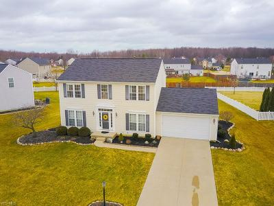 North Ridgeville Single Family Home For Sale: 38630 Misty Meadow Trl