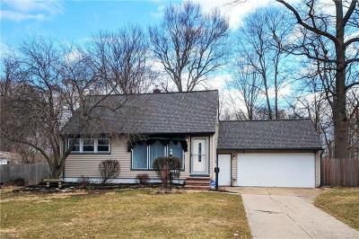 Cleveland Single Family Home For Sale: 4243 Metropolitan Dr