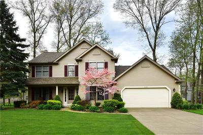 Avon Lake Single Family Home For Sale: 533 Rockwood Ct