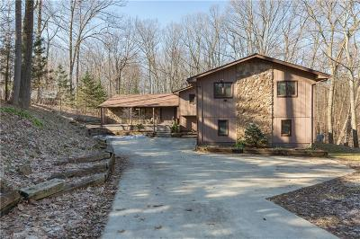 Hinckley Single Family Home For Sale: 2124 Hinckley Hills Rd