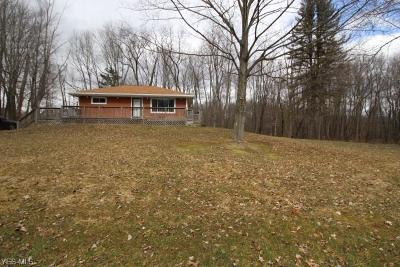 Canfield Single Family Home For Sale: 10876 West Western Reserve Rd