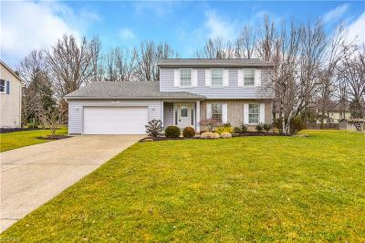 Canfield Single Family Home For Sale: 473 S Briarcliff Drive