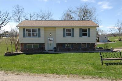 Zanesville OH Single Family Home For Sale: $154,000