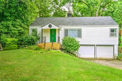Brecksville Single Family Home For Sale: 12833 Chippewa Rd