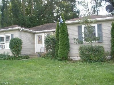 Elyria Single Family Home For Sale: 6402 Lake Ave