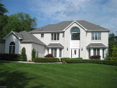 Strongsville Single Family Home For Sale: 14803 Windsor Castle Ln