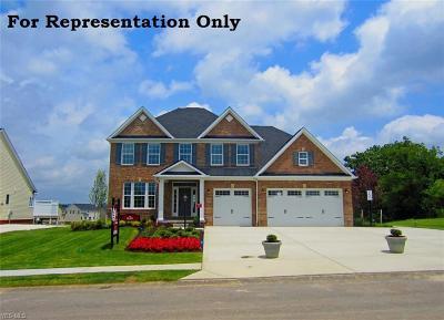 Medina Single Family Home For Sale: 4225 Amber Glen Dr