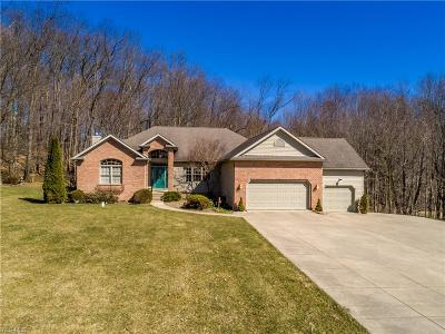Wadsworth Single Family Home For Sale: 1531 South Medina Line Rd