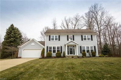 Twinsburg Single Family Home For Sale: 2873 Mathers Way