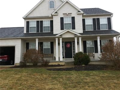 Medina County Single Family Home For Sale: 423 Weatherstone Dr