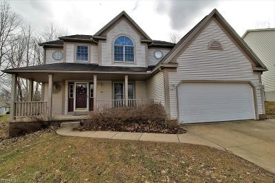 Ravenna Single Family Home For Sale: 3086 Hidden Brook Dr
