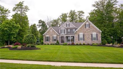 Medina Single Family Home For Sale: 6468 Torington Dr