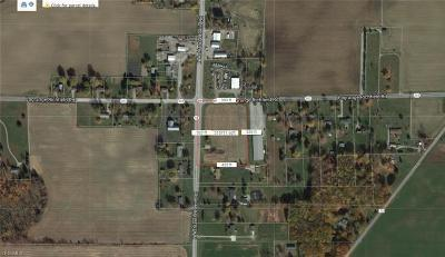 Lorain County Residential Lots & Land For Sale: State Route 58