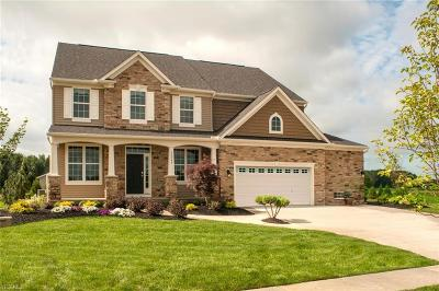 North Ridgeville Single Family Home For Sale: Tbd Capri Ln
