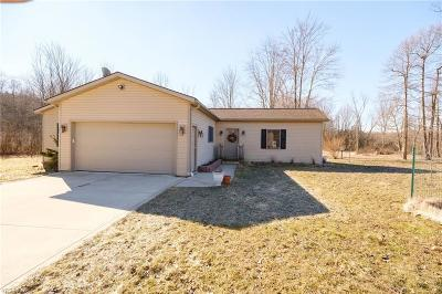 Medina Single Family Home For Sale: 8190 Coon Club Rd