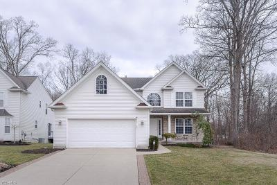 Lorain County Single Family Home For Sale: 447 Country Walk