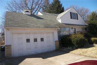 Euclid Single Family Home For Sale: 340 East 262nd St