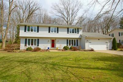 Chagrin Falls Single Family Home Contingent: 17621 Merry Oaks Trl