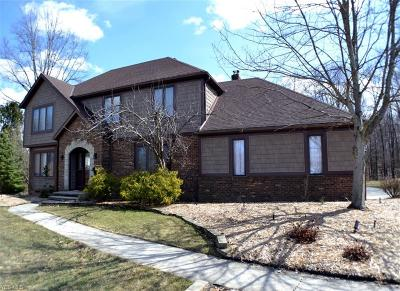 North Royalton Single Family Home For Sale: 4861 Scottsdale Dr