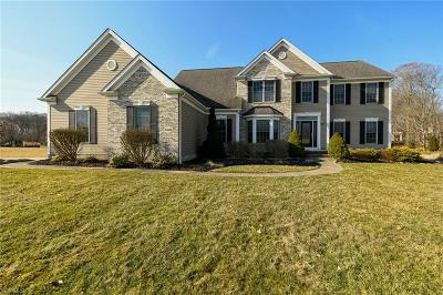 Wadsworth Single Family Home For Sale: 7896 South Passage Dr