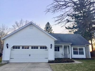 Chagrin Falls Single Family Home For Sale: 311 North Cleveland St