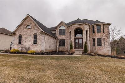 Strongsville Single Family Home For Sale: 20758 Donegal Ln