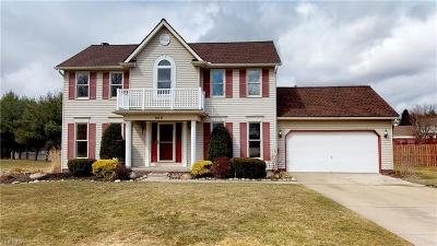 Kent Single Family Home Contingent: 968 Fieldstone Dr