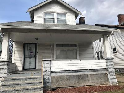 Cleveland OH Single Family Home For Sale: $36,000