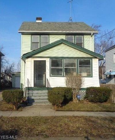 Cleveland OH Single Family Home For Sale: $24,900