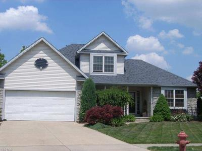 Elyria Single Family Home For Sale: 114 Erin Ct
