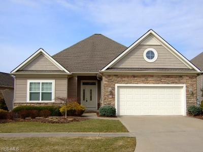 Broadview Heights Single Family Home For Sale: 240 Prestwick Dr