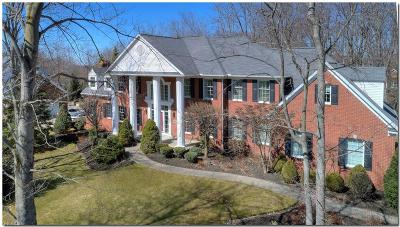 Chagrin Falls Single Family Home For Sale: 8340 Woodberry Boulevard
