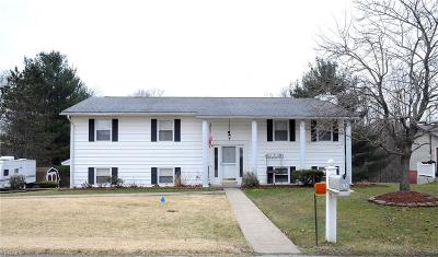 Guernsey County Single Family Home For Sale: 9254 Liberty Rd