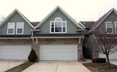 Elyria Condo/Townhouse For Sale: 106 Stoney Brook Dr