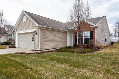 North Ridgeville Single Family Home For Sale: 9352 Saw Mill Dr